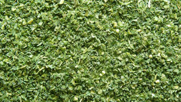 Zielona fasolka - Granulat od 0,3 do 2,5 mm