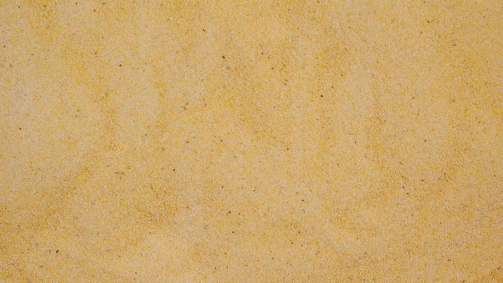 Ziemniak - Puder