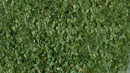 Spinach 1-3mm