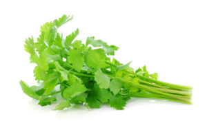 , Suszone warzywa i zioła, Suszarnia Warzyw Jaworski